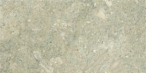 Vendor: 2, Stone: Limestone-Seagrass Honed 3x6